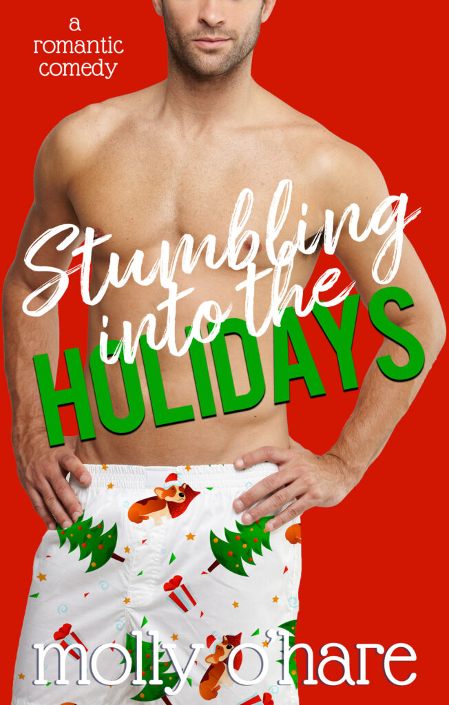 Book Cover: Stumbling into the Holidays